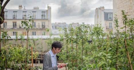 Ces dingues qui veulent transformer Paris en jardin géant | Innovation sociale | Scoop.it