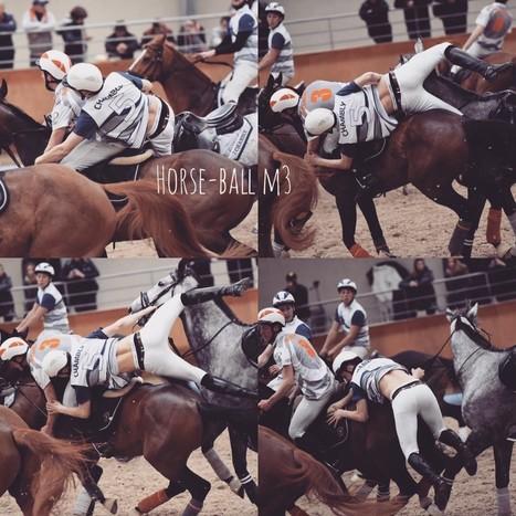 un sport qui décoiffe   horse ball   Scoop.it