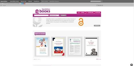 OpenEdition Books : 3 127 ouvrages et 3 millions de visiteurs   à livres ouverts - veille AddnB   Scoop.it