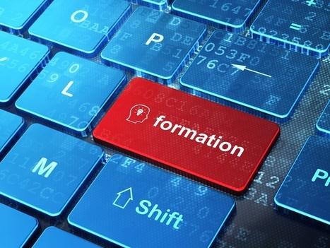 Acquérir des compétences par le numérique, quels enjeux ?  - EPALE - Commission européenne | Usages des  TIC et du Web 2.0 | Scoop.it