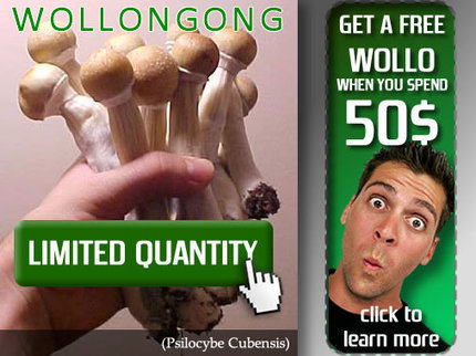 Mushroom Spores | Mushroom Spores | Scoop.it