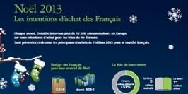 Infographie   Quid des intentions d'achat des Français pour noël 2013 ?   Webmarketing   Scoop.it