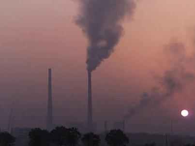 Quercus vai fazer queixa em Bruxelas por poluição em Portugal | Meio Ambiente em Portugal | Scoop.it