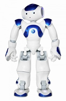 Darty teste le robot NAO pour animer un de ses points de vente - Ooh-tv | Digital Innovation | Scoop.it
