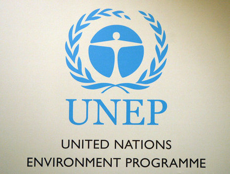 UN Agency: Sustainable Development Requires Altering The World's Financial System | Développement durable et efficacité énergétique | Scoop.it