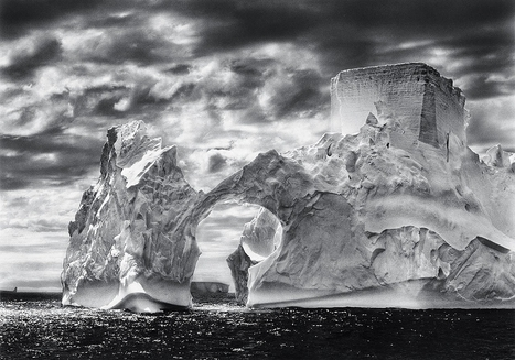 Sebastião Salgado – Genesis | Photographic Museum Of Humanity Blog | Visual Culture and Communication | Scoop.it
