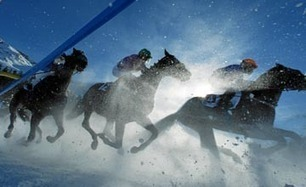 Switzerland Heavy snow spices up White Turf action | Horse Racing News | Fran Jurga: Equestrian Sport News | Scoop.it