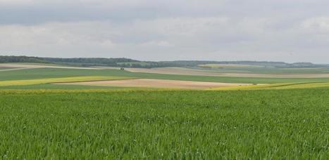 Foncier : Le Parlement européen veut limiter la concentration des terres agricoles - La France Agricole | Agriculture et Alimentation méditerranéenne durable | Scoop.it