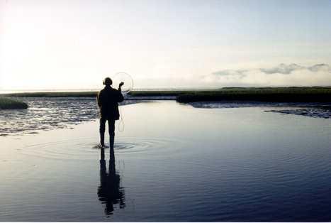 la Camargue, une île sonore à explorer avec Bernard Fort | DESARTSONNANTS - CRÉATION SONORE ET ENVIRONNEMENT - ENVIRONMENTAL SOUND ART - PAYSAGES ET ECOLOGIE SONORE | Scoop.it