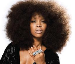 Les femmes noires auraient elles honte de leurs cheveux crépus ? NON! - Conseils beauté pour une peau lisse et éclatante, astuces beauté pour le soin de la peau, recettes cosmétiques home-made, avi... | nappy word | Scoop.it