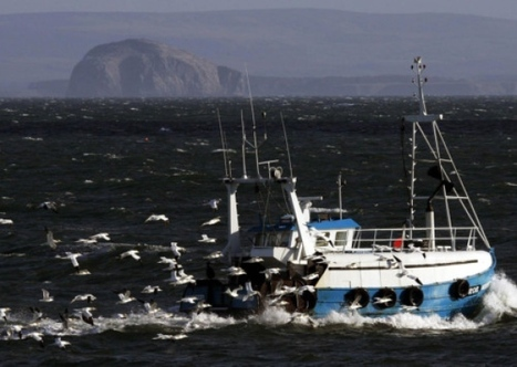 #Overfishing worse in #Scotland - conservation group | Rescue our Ocean's & it's species from Man's Pollution! | Scoop.it
