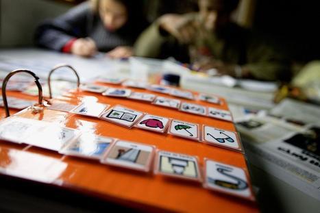 Tribunais estão a mandar repor Subsídio de Educação Especial | ESCOLA PÚBLICA+ | Scoop.it