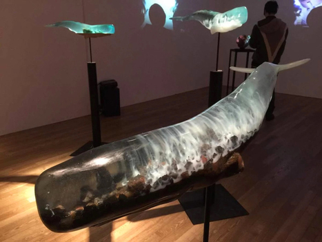 Shipwrecks and Deep Ocean Scenes Encapsulated Inside Translucent Whale Sculptures | Art for art's sake... | Scoop.it