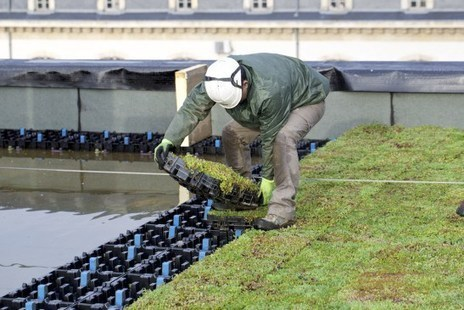 Une toiture «hydroactive» se met en place à Nancy   Environnement actus   Scoop.it