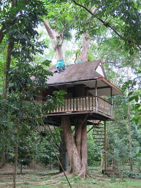 A weekend in Thailand's Khao Sok National Park | South East Asia Travel News | Scoop.it