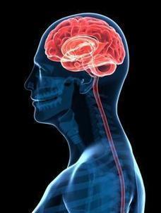 The Neurobiology of Grace Under Pressure | Body... | Functional Medicine | Scoop.it