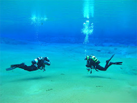 SCUBA SCOOP/latest dive stories: Diving with a buddy - are you liable if anything goes wrong? | All about water, the oceans, environmental issues | Scoop.it