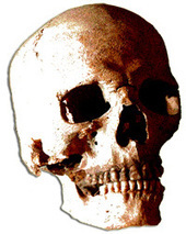 Horror Film History — Introduction | Horror Films | Scoop.it