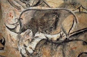 The History of Rhino Poaching | GarryRogers NatCon News | Scoop.it