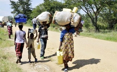 allAfrica.com: InFocus » Mass Refugee Exodus Overwhelms Uganda | Conservation Management | Scoop.it