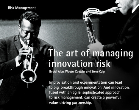 The Art of Managing Innovation Risk | Mediocre Me | Scoop.it