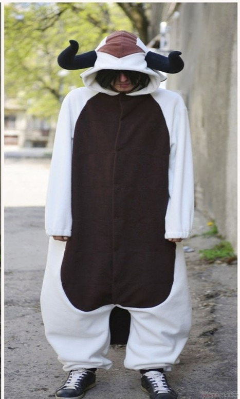 Appa onesie sky bison costumes | adult onesies sale-pajama.com | Scoop.it