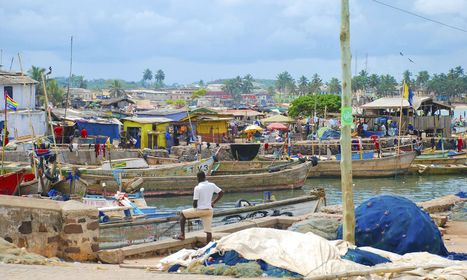 The development dilemma: give a man a fish or teach him to fish ... | Communication for Development | Scoop.it