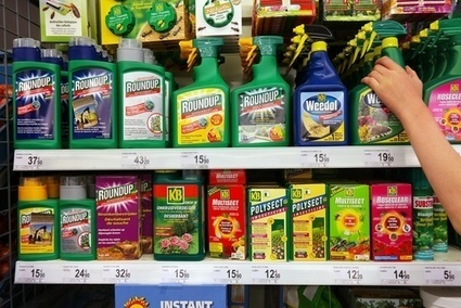 Monsanto and Bayer: Why Food and Agriculture Just Took a Turn For The Worse | sustainablity | Scoop.it