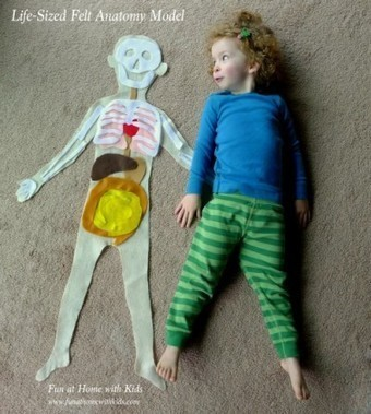 Learning about our bodies is fun with felt | Teach Preschool | Scoop.it