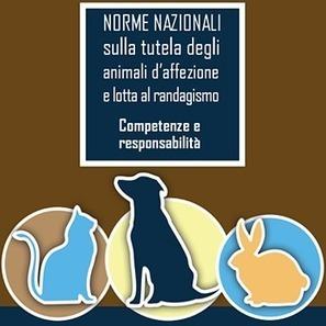 (IT) (PDF) - Norme nazionali sulla tutela degli animali d'affezione e lotta al randagismo: competenze e responsabilità | salute.gov.it | Glossarissimo! | Scoop.it