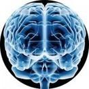 La música desarrolla el cerebro  de los niñospequeños | Interactive News - Noticias interactivas | Scoop.it
