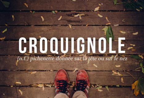 26 mots WTF qu'on devrait utiliser plus souvent en français | Social media | Scoop.it