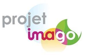 Imago : un Serious Game éducatif contre l'illettrisme | Video Games, Serious Games, Gamification, Social Games - Design | Scoop.it