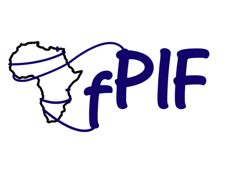 Africa Records Major Increase in Domestic Bandwidth Production   AfPIF 2015   Internet in Africa   Scoop.it