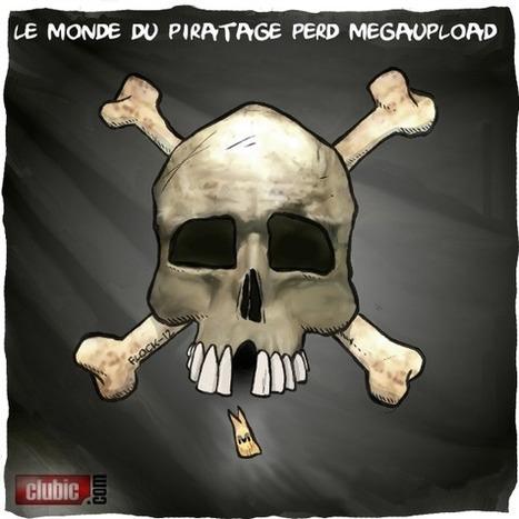 Fin de Megaupload : pour Flock ça ne changera pas grand chose | Education & Numérique | Scoop.it