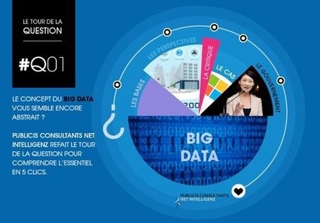 Le Tour de La Question : Le Big Data by Publicis Consultant Net Intelligenz | Dynamic Creative Optimization (DCO) | Scoop.it