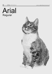 Se i gatti fossero fonts - Web Che Comunica   Blog   Web side   Consigli pratici per un migliore web design   Scoop.it