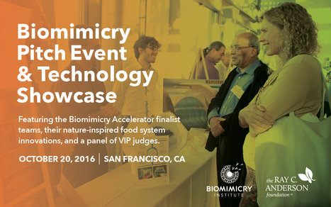Biomimicry Pitch Event and Technology Showcase – Biomimicry Institute | Designing the future | Scoop.it