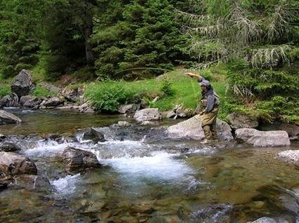 Valsabbia Provincia  - Pesca a mosca   Pesca a Mosca   Scoop.it