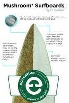 The Circular Economy Leads to...Mushroom Surfboards? | The Glory of the Garden | Scoop.it