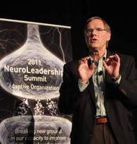 Rethinking Organizations with the Brain in Mind: The Big Picture | Psychology Today | NeuroLeadership | Scoop.it