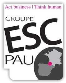L'ONU décerne un Prix l'ESC Pau | Actualité des Grandes Écoles de Commerce | Scoop.it
