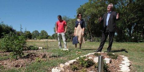 Poitou-Charentes : le premier cimetière 100% écologique | SandyPims | Scoop.it