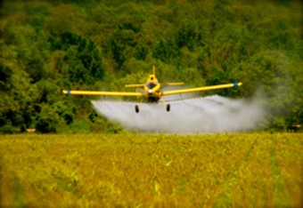 How the Heirs of a Multi-Billion Dollar Oil ... - Occupy Monsanto | real utopias | Scoop.it