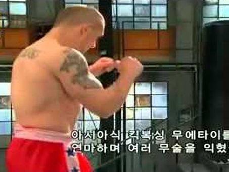 Daily Kung Fu: Showdown: Capoeira, Karate, Muay Thai, Taekwondo | artes marciales profesionales | Scoop.it