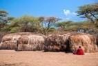 Maasai pueblo, Tanzania, África - 11 DE DICIEMBRE: chozas primitivas maasai en su pueblo el 11 de diciembre de 2012 en Tanzania. Pueblo Maasai son algunos de los más conocidos de grupos étnicos afr... | Arte Africano Antiguo | Scoop.it