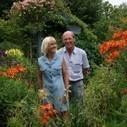 Poppy Cottage; A wonderful Cornish Garden for all seasons   MyGardenSchool Blog   Scoop.it