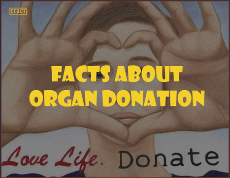 Facts about Organ Donation - Interesting Facts   Facts   Scoop.it