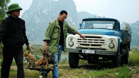 """Le camion de mon père"" de Mauricio Osaki | ARTE Cinema | Asie(s) Cultures | Scoop.it"