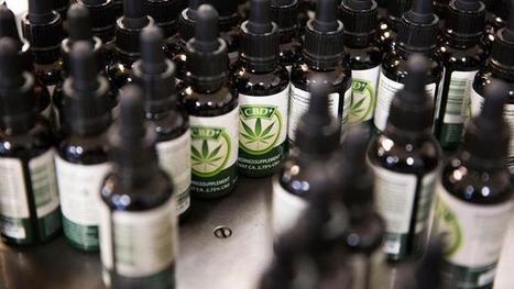 'Wondermiddel' CBD is illegaal, maar overal te koop | Drugsbeleid | Scoop.it